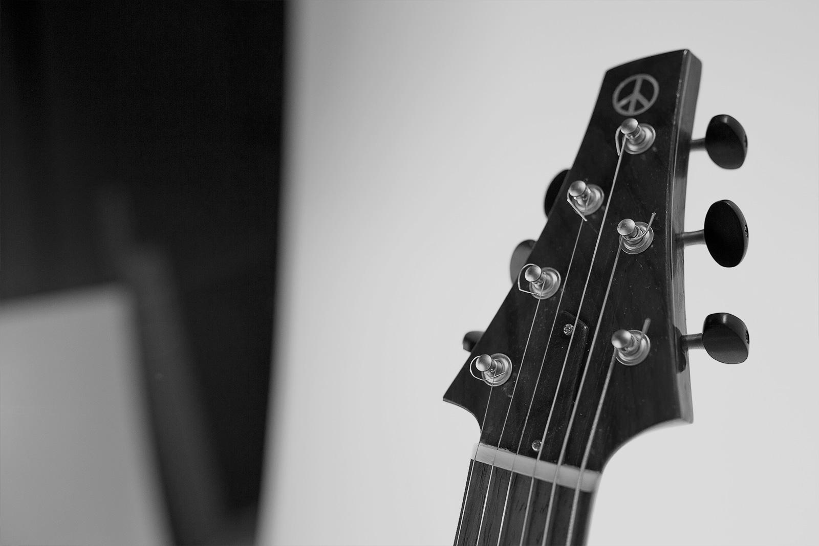Davide Pusiol Guitarworks